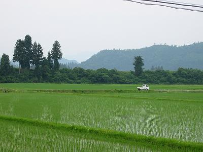 今朝の新潟県南魚沼市はくもりです