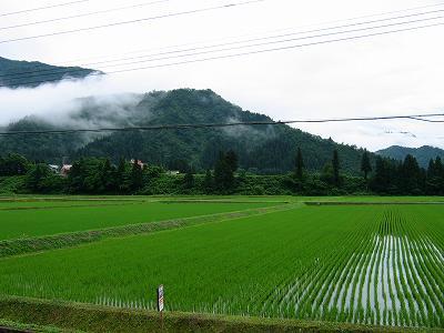 新潟県南魚沼市は梅雨本番