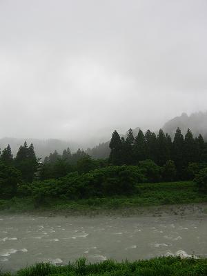 田んぼの脇を流れる水無川が増水しています