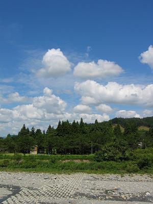 青空が見えて爽快な一日です