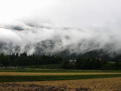 田んぼの向こうの山にかかっていた霧が徐々に晴れてきています