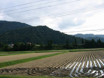 青空が見えて爽やかな一日でした@新潟県南魚沼市