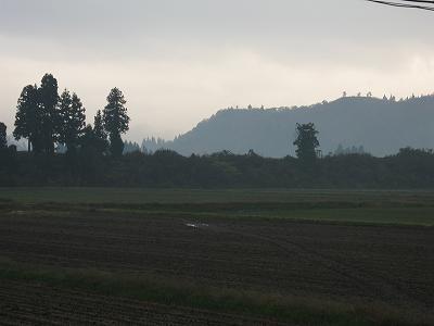 暗い朝@魚沼産コシヒカリの田んぼ