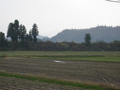今日はくもり・・・あまり寒くないです@魚沼産コシヒカリの田んぼ