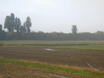 今朝も冷え込んでいます@魚沼産コシヒカリの田んぼ