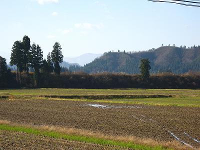 朝から快晴の青空が広がっています@魚沼産コシヒカリの田んぼ