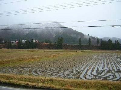 初雪が降りました@魚沼産コシヒカリの田んぼ