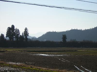 今日の魚沼産コシヒカリの田んぼは快晴です