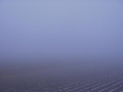 霧に覆われた寒い朝です@魚沼産コシヒカリの田んぼ