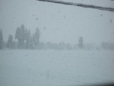 魚沼産コシヒカリの田んぼは雪が積もって本格的な冬の景色になりました