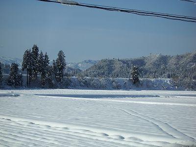 青空が広がって雪景色がきれいです@魚沼産コシヒカリの田んぼ