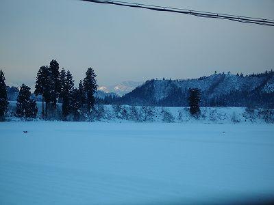 冷え込みの厳しい朝です@魚沼産コシヒカリの田んぼ