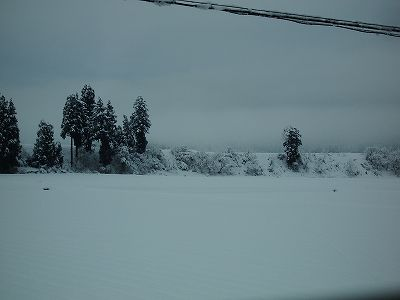 指先が凍てつくほどの冷え込みで道路が凍っていました@魚沼産コシヒカリの田んぼ
