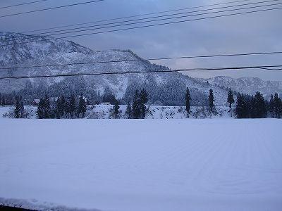 今朝も寒いです@魚沼産コシヒカリの田んぼ