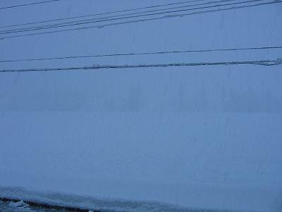 久々に1月らしい景色になりました@魚沼産コシヒカリの田んぼ