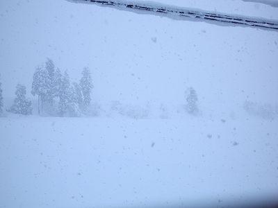 昨日からまた雪が40cmほど積もりました