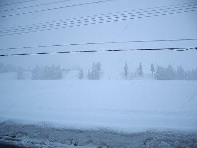 今日もたくさん雪が降りました@魚沼産コシヒカリの田んぼ
