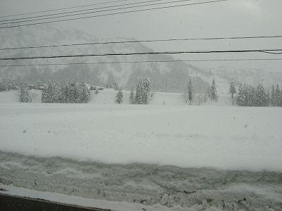 降り続いた雪は峠を越しました@魚沼産コシヒカリの田んぼ