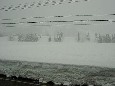 また20cmほど雪が積もりました@魚沼産コシヒカリの田んぼ
