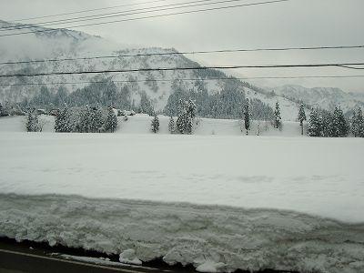 今日はくもりで雪が降っていません