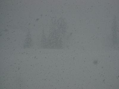 5年前の豪雪のときに近づいてきているかんじがします