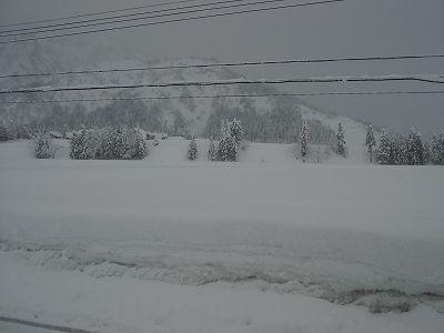 また50~60cmくらいの雪が積もりました@魚沼産コシヒカリの田んぼ