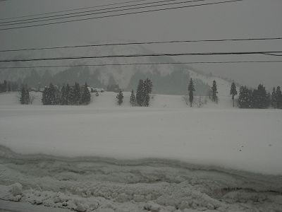また冬景色に戻りました@魚沼産コシヒカリの田んぼ