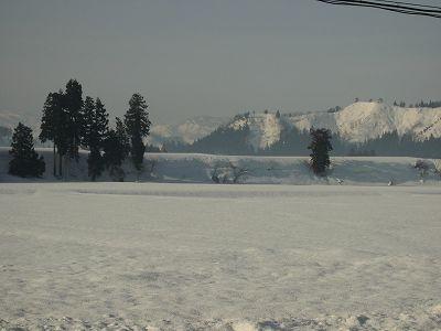 今朝の魚沼産コシヒカリの田んぼは冷え込んでいます