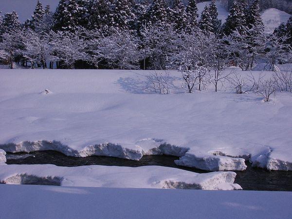 水無川では、土手が冬の景色、水面が春先の景色