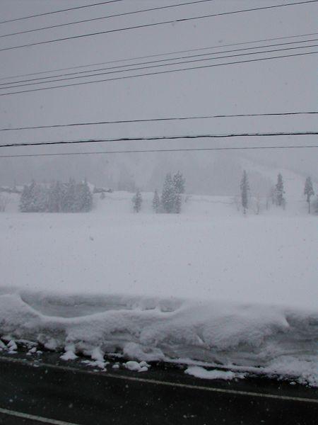 今朝は真冬の風景に戻っています@魚沼産コシヒカリの田んぼ