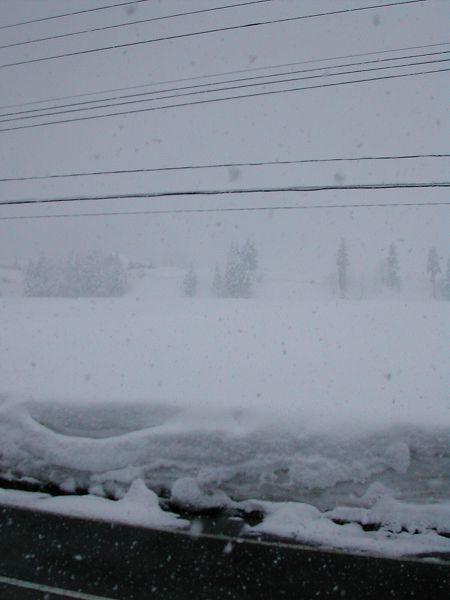 すっかり真冬の景色に戻りました@魚沼産コシヒカリの田んぼ