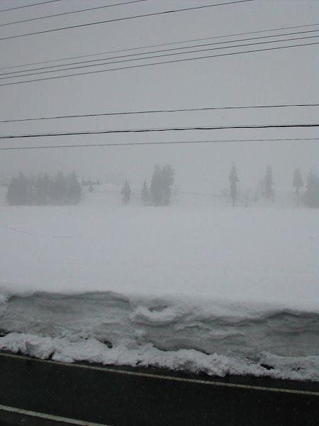湿った雪が降っています@魚沼産コシヒカリの田んぼ