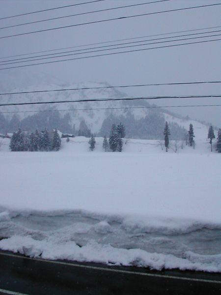 昨晩からまた10cm近く雪が降りました@魚沼産コシヒカリの田んぼ