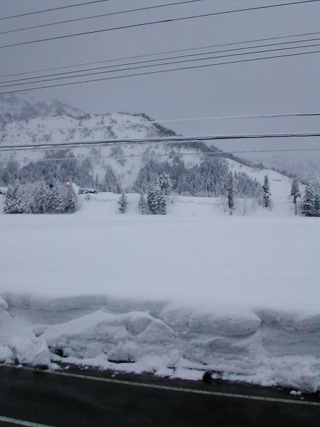 魚沼産コシヒカリの田んぼはまた雪景色になっています