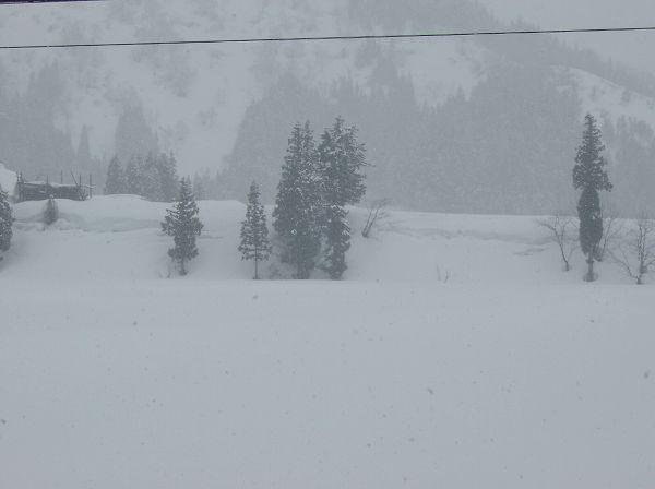 また10cmくらい雪が降りました@魚沼産コシヒカリの田んぼ