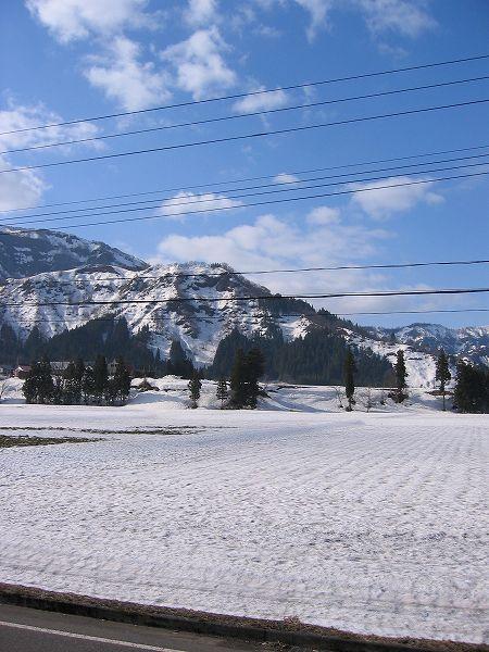 今朝はいい天気・・・昨日の雨で雪解けが進みました
