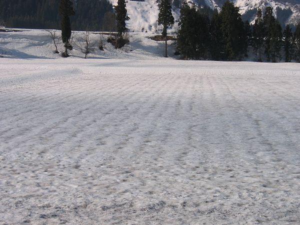 田んぼの雪面に黒い部分が増えて、そろそろ土が見えてきそうな気配