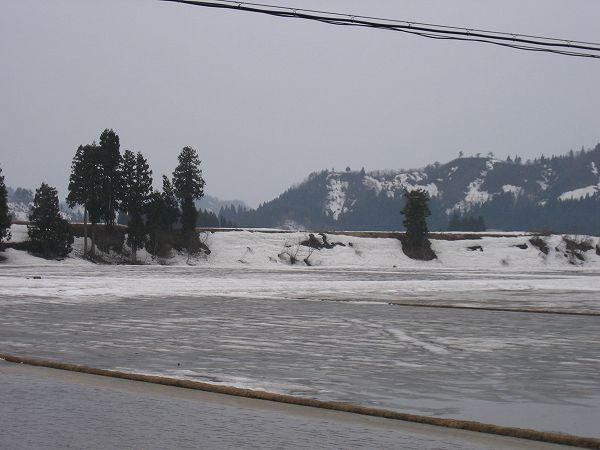 午後から雨降りです@魚沼産コシヒカリの田んぼ by IXY DIGITAL 400