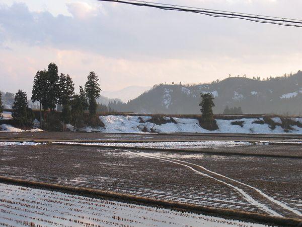 夕方近くになってまた青空が広がっています@魚沼産コシヒカリの田んぼ