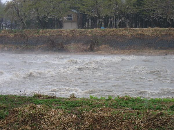 水無川の流れが激しくなっています