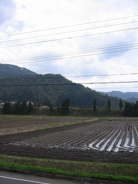 あたたかい農作業日和になりました@魚沼産コシヒカリの田んぼ