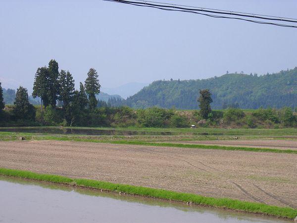 魚沼産コシヒカリの田んぼは今日もよく晴れて農作業日和です