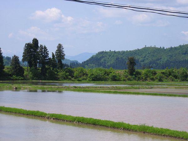 今日の新潟県南魚沼市は天気がいいです