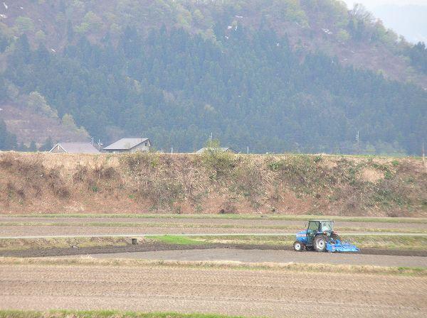 トラクターによる田起こし作業が始まりました@魚沼産コシヒカリの田んぼ