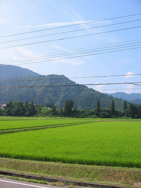新潟県南魚沼市は比較的涼しい朝です