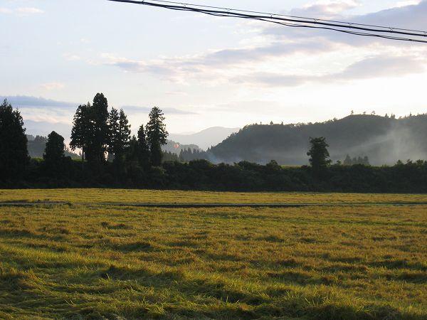 魚沼産コシヒカリの田んぼでは夕方になってまた青空が広がっていました