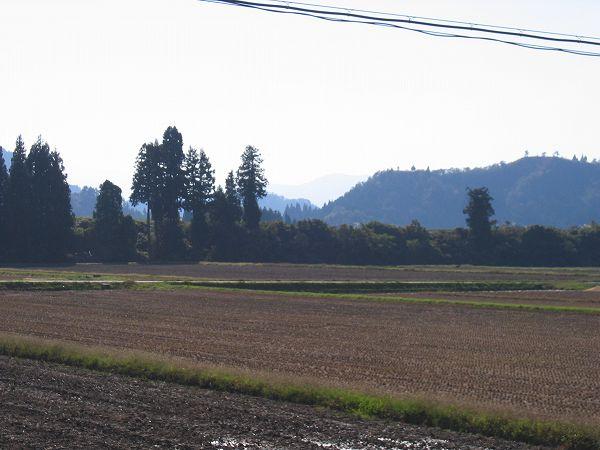 いい天気で日射しがまぶしく感じます@新潟県南魚沼市