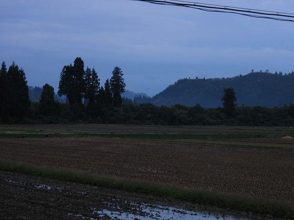 今日の魚沼産コシヒカリの田んぼは雨が降ったり止んだり