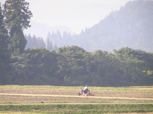トラクターに乗って来年の稲作に向けた作業を行っている人