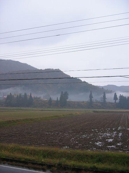 今日は雨降り・・・徐々に冬に近づいています